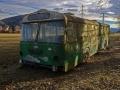 Bus der Grazer-Verkehrsbetriebe