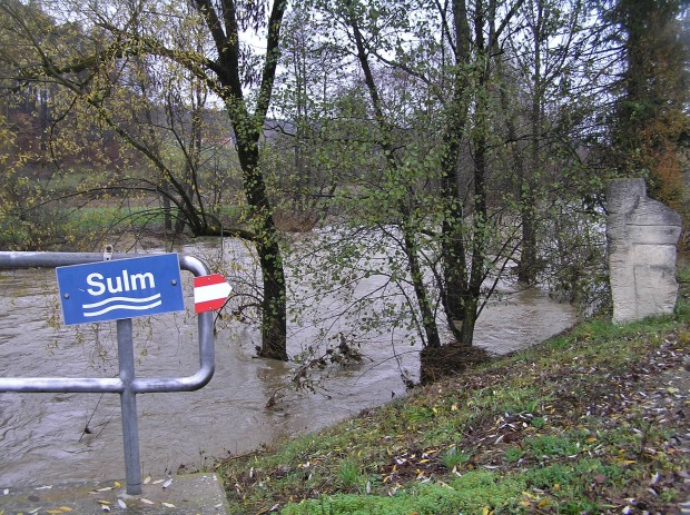 sulm-fvl-1-011
